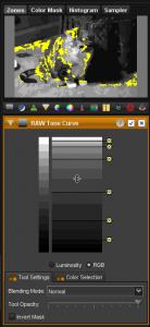 Raw Tone Curve